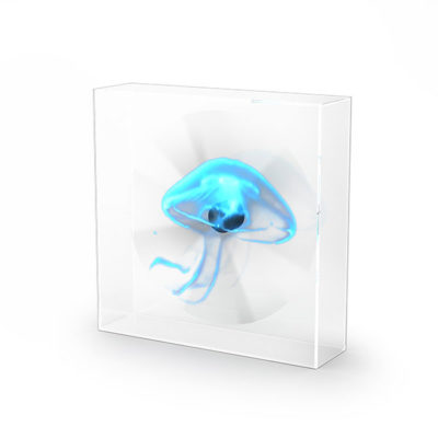 URBAN Hologram Stand Square